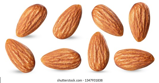 almond raw piece collection set.almond full macro shoot nuts healthy food ingredient on white isolated .Clipping path