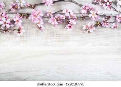 almond tree branch with flowers on a wooden background. Flower frame. Greeting card template. Spring  flowers background for your project or wallpaper