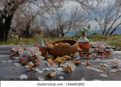 almond trees , almond flowers on wooden table , almonds and natural almond oil in the bottle