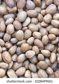 Almonds dry in the sun