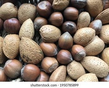 Almonds and hazelnuts in shells
