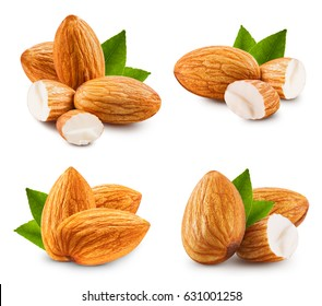 Almonds nuts collection isolated on white background