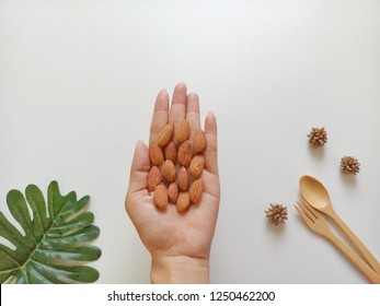Almonds seed in hand on white background is actually the seed from the fruit of an almond tree. The scientific name is Prunus dulcis and they are native to the Middle East, India, and North Africa.