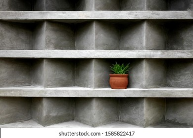 Aloe in a ceramic pot, placed in a niche on a concrete wall