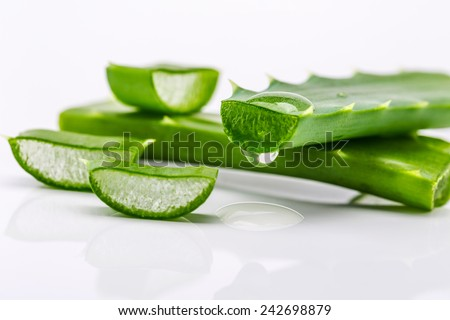 Aloe sliced, isolated on a white background