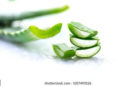 Aloe Vera closeup. Sliced Aloevera natural organic renewal cosmetics, alternative medicine. Organic Skin care concept. Isolated On white background.
