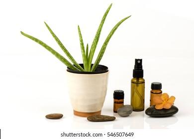 Aloe vera Extract: helps tighten skin pores.