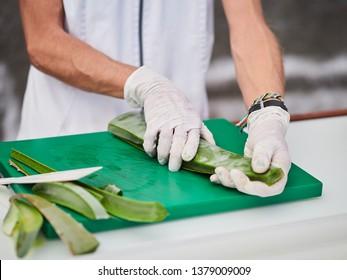 Aloe Vera Gel and Cut Aloe Vera Leaves. Aloe Vera gel almost use in food, medicine and beauty industry.