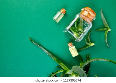Aloe vera oil in glass bottle and towel for spa on green background. Star cactus, Aloin, Jafferabad, Aloe barbadensis, Barbados herbal medicine for skin treatment and care. Top view, flat lay