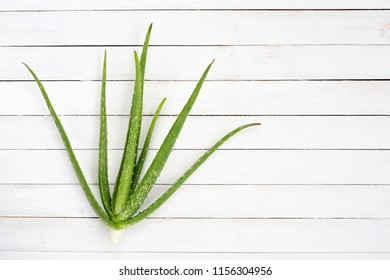 Aloe vera on white wooden desk with copy space,Top view.