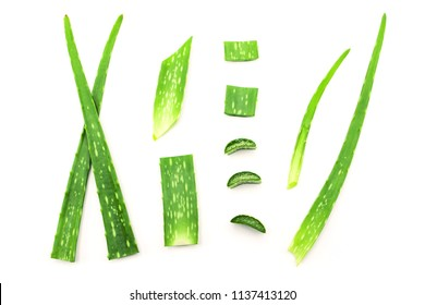 aloe vera slice top view isolated on white background.