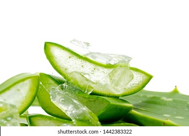 Aloe Vera Slices (Aloe barbadensis Mill.,Star cactus, Aloe, Aloin, Jafferabad or Barbados) fresh leaf isolated on white background, a very useful herbal medicine for skin care and hair care and for in