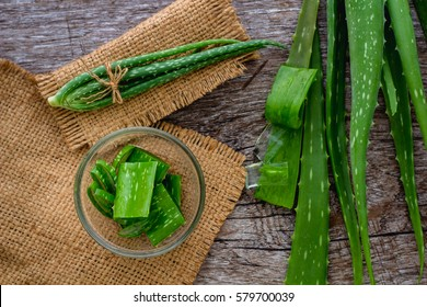 Aloevera fresh leaf on the wooden table,aloe vera on wooden table,Herbs for Health,copy space.