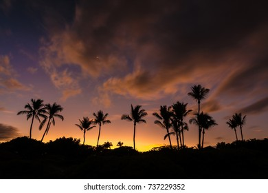 Aloha Sunrise. Idyllic Hawaiian sunrise with silhouette of palm trees and a very colorful sky from secret beach on the tropical island of Maui