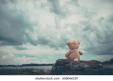 Alone bear doll,very sad,alone,lonely,dark tone,vintage stlye