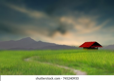 Alone house at the green land