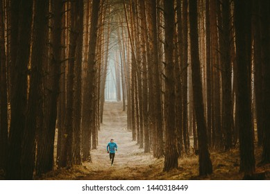 Alone runner in beautiful forest, trail run photo
