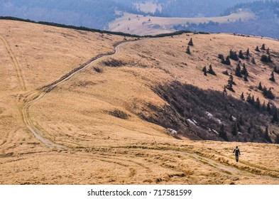 Alone tourist walking in Carpathian mountains ridge in late spring time