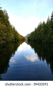 along the famous Caledonian canal in scotland is this pure serene avenue of trees.