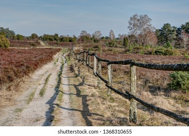 Along the old weathered wooden fence leads the seemingly infinite trail through the nature reserve Luenburger heath which offers hikers a great nature experience in spring as well.
