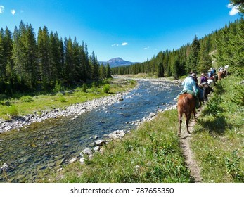 Along the trail by the river - Yellowstone National Park