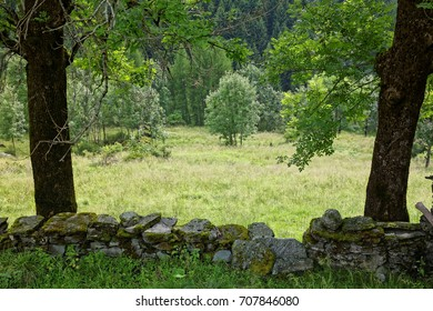 Alp meadow with an old stone wall