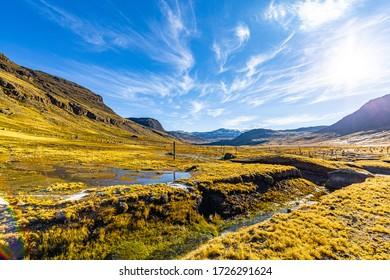 alpacas and a beautiful river in the highland of peru.
