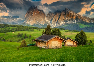Alpe di Siusi - Seiser Alm with Sassolungo - Langkofel mountain group in background at sunset. Yellow spring flowers and wooden chalets in Dolomites, Trentino Alto Adige, South Tyrol, Italy, Europe