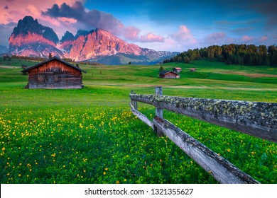 Alpe di Siusi - Seiser Alm resort with Sassolungo - Langkofel mountain group in background. Landscape with colorful spring flowers and wooden chalets in Dolomites, Trentino Alto Adige, Italy, Europe
