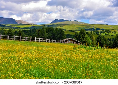 alpe di villandro It is the second largest mountain pasture in Europe south  tyrol italy