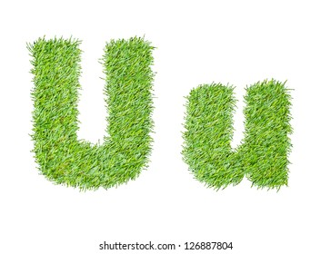 Alphabet from the green grass. isolated on white