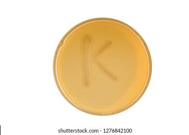 Alphabet made of bacteria escherichia coli culture on LB agar plate - letter k