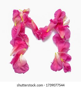 Alphabet made of peony petals. Letter M, layout for design.