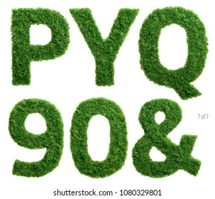 Alphabet set of photographed green grass letters, numbers and punctuation marks on white background.