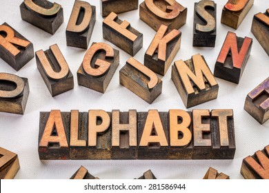 alphabet word typography in vintage wood type printing blocks against artist canvas