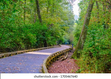 ALPHARETTA, GEORGIA - October 21, 2019: The Big Creek Greenway is over 20 miles of paved and board fitness trails spanning two counties north of Atlanta through lush green wetlands.