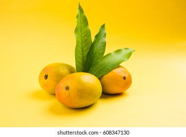 Alphonso Mango or Hapoos Aam is a seasonal and juicy fruit from India known for it's sweetness, richness and flavour. Over colourful background. Selective focus