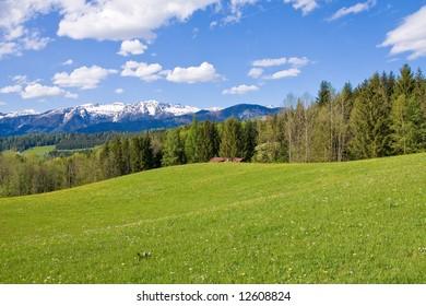 alpine farm land in austria