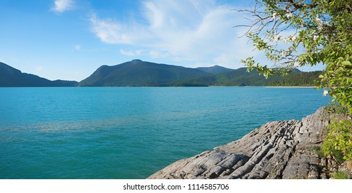 alpine lake walchensee with turquoise water and rocky shore with blooming apple branches