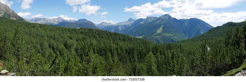 Alpine landscape in summer in Valtellina, northern Italy