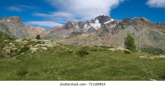 Alpine landscape with tall mountains and pasture in summer in Valmalenco, northern Italy