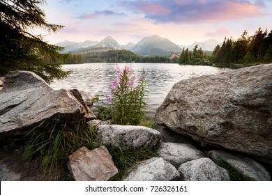 Alpine mountain lake sunny morning view