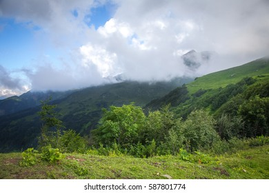 Alpine mountain landscape in a green grass