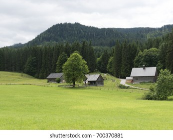 Alpine mountain medieval village. Wooden timbered cottages. Tourist open-air museum, travel destination for holidays. Mountain scenery near Salzburg. Hills in background, grassy pasture in foreground.