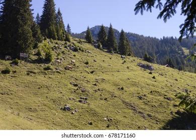 Alpine panorama against a clear blue sky