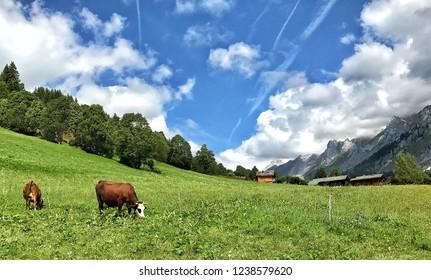 Alpine pastures, Les Aravis, La Clusaz