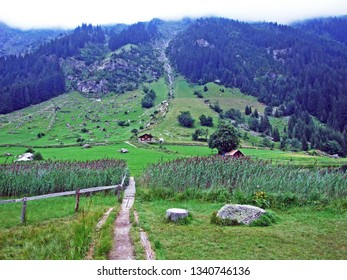 Alpine pastures and meadows in the Maderanertal alpine valley - Canton of Uri, Switzerland