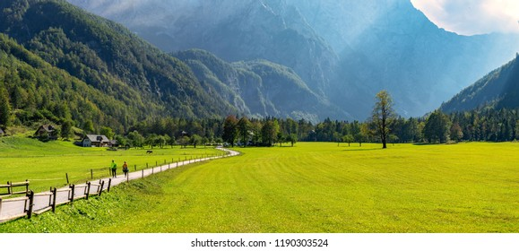 Alpine valley Logarska dolina, Slovenia, green pasture with forest and mountains in background, outdoor tourism and travelling, warm and bright scene, peaceful, couple walking on the road, horses on