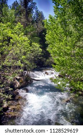 Alpine water stream inside the Aigues Tortes National Park in Spain.