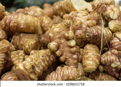 Alpinia galanga root or laos, herb used in Southern Asia cuisine and Chinese medicine